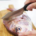 魚をさばくナイフ